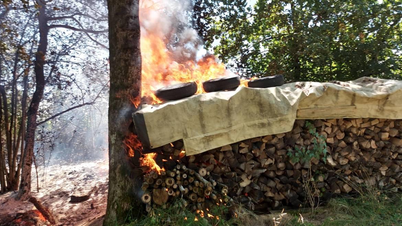 B 1 Brand Holzstapel